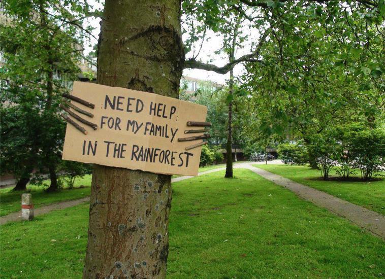 Plant Et Træ Help My Family